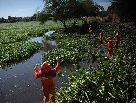 Atividade ambiental conscientiza moradores do bairro Nova Brasília